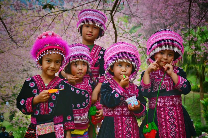 Hmongพาเที่ยวแม่แจ่ม
