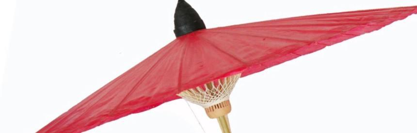 UmbrellaFestivalCoverFB2