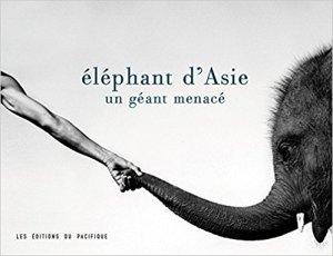 ElephantsAsie
