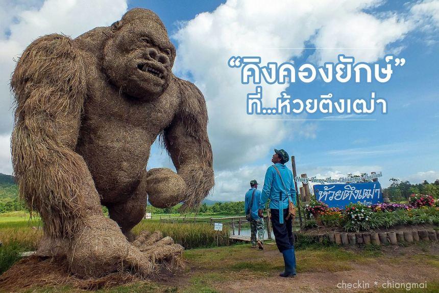 Huay Tueng Thao - King Kong - Checkin Chiangmai0