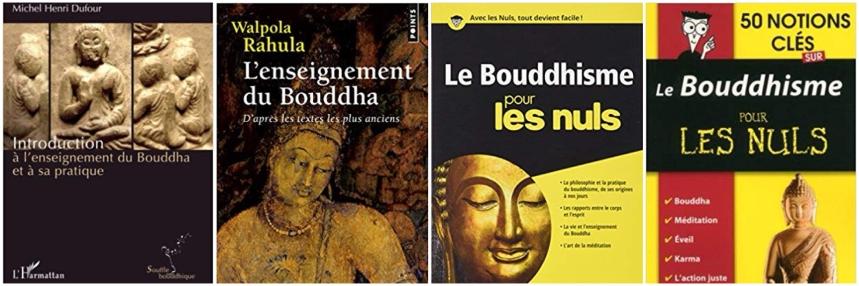 Bouddhisme - Livres Montage 1.jpeg