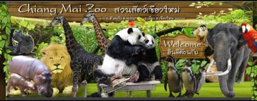 Zoo de Chiang Mai Cover FB4