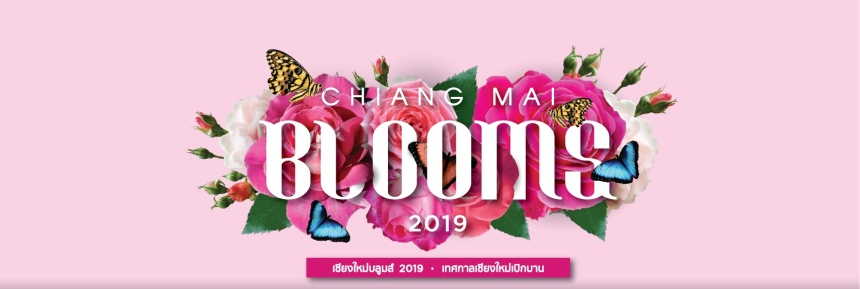 cmflowerfestival2019chiangmaibloomscoverfbrecadrc3a9