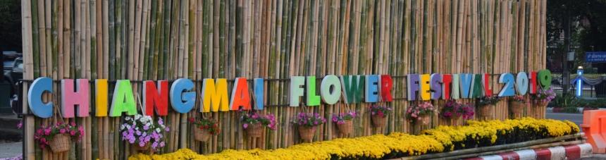 cmflowerfestival2019photomarco8