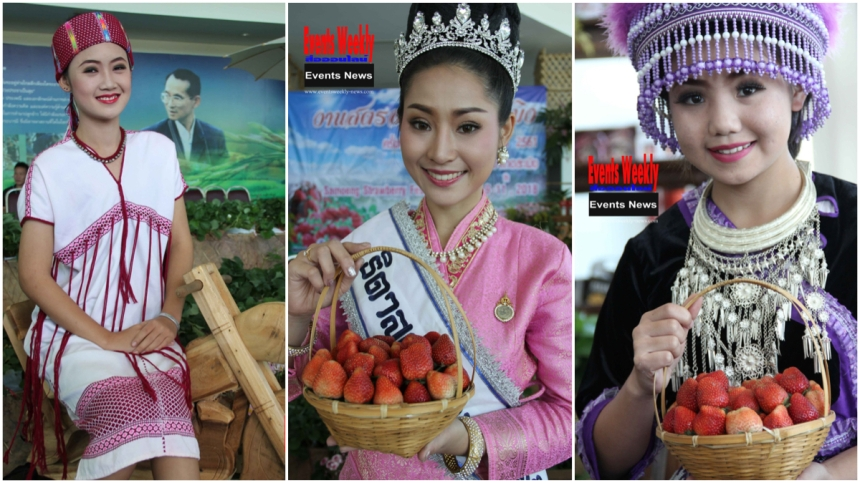 SamoengStrawberryFair2019PhotoEventsWeeklyNewsMontage